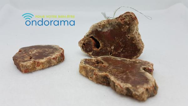 Bois fossile Ondorama bien être